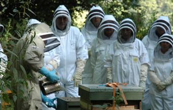 National Beekeeping Centre Wales