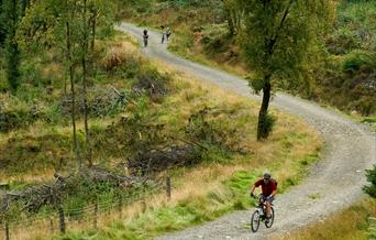 Llyn Elsi Reservoir Biking Trail